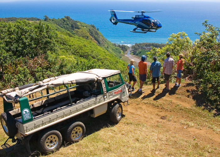Blue Hawaiian Heli-hiking with Hawaii Forest and Trail