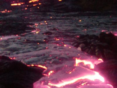 Moths, Spiders, And Lava