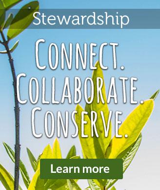 banner-stewardship