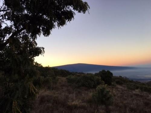 mauna loa sunrise