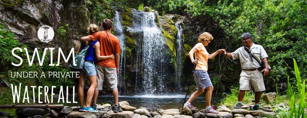 Hawaii Waterfall Tours